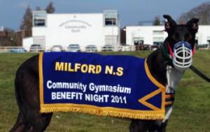 Milford_NS_dog