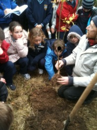 native_tree_planting2